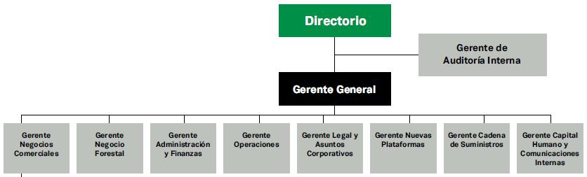 Estructura Organizacional Corporativo Masisa